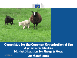 EU beef and veal market A brief overview and some statistical data