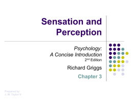 Griggs Chapter 3: Sensation and Perception