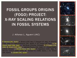(FOGO) project: X-ray scaling relations of fossil systems