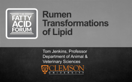 Rumen Transformations of Lipid Biohydrogenation
