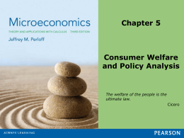 Consumer Welfare and Policy Analysis