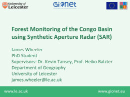 Forest Monitoring of the Congo Basin using Synthetic Aperture Radar