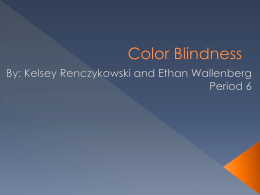 KelseyR, EthanW Color Blindness - OG