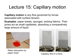 Lecture 15-16