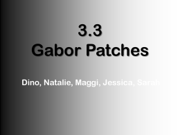 3.3 Gabor Patches - Employees Csbsju
