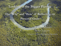 Looking at the Bigger Picture - School of Psychological Sciences