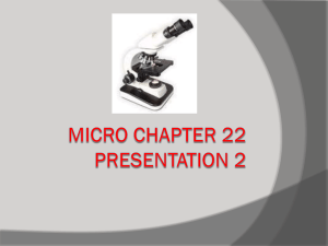 Micro Chapter 22 Presentation 2