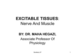 EXCITABLE TISSUES: Nerve And Muscle For 2nd Year Dental