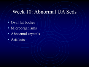 PowerPoint Presentation - Week 10: Abnormal UA Seds