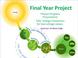 Project Progress Presentation(MS PowerPoint Format)