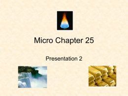 Micro chapter 25- presentation 2 Elasticity