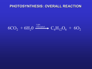 photosynthesis: overall reaction