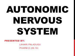Physiology – Autonomic Nervous System