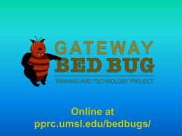 Bed Bugs - Public Policy Research Center - University of Missouri