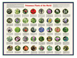 12 Lecture 09-01-2014 Poisonous Plants 1