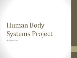 nickHumanBodySystemsProject