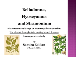 The Benefits of Belladonna