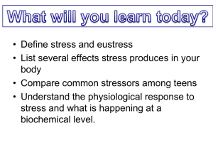 Stress PowerPoint