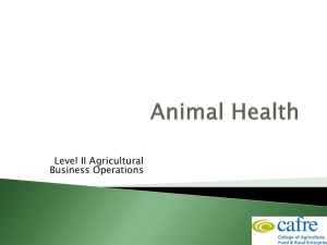 Dairy Animal Health Week 2