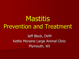 Mastitis Prevention and Treatment