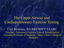 The Upper Airway and Cardiopulmonary Exercise Testing