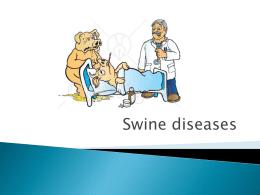 swine - Dr. Brahmbhatt`s Class Handouts
