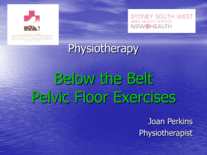 Physiotherapy Below the Belt Pelvic Floor Exercises
