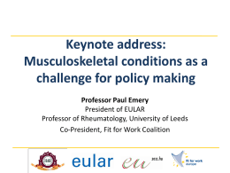 Musculoskeletal conditions as a challenge for policy making