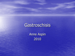 Gastroschisis - the Yorkshire Neonatal Network