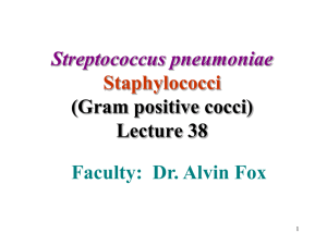 Streptococcus pneumoniae and Staphylococci