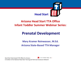 Prenatal Development - Arizona Head Start Association