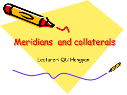 meridians and collaterals