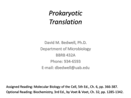 Prokaryotic Translation - Department of Microbiology
