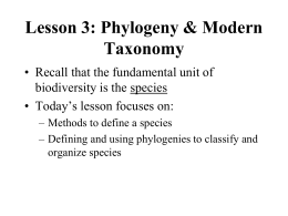 Lesson 3 Species Concepts and Phylogeny