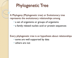 SP01_Lec04_Comparative Phylogeny and Tree Analysis - bio-bio-1