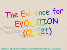 BIO102 Evolution Part1 Ch.21