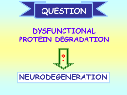 Lecture 20 Protein degradation