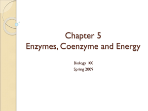 Chapter 5 Enzymes, Coenzyme and Energy