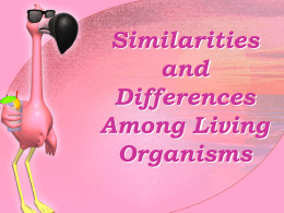 Similarities and Differences Among Living Organisms