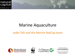Aquaculture_Toft