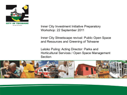 Inner City Streetcape revival and public open spaces
