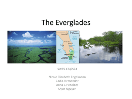 Everglades_GROUP presentation_Sep22