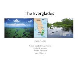 Everglades_GROUP presentation_Sep22