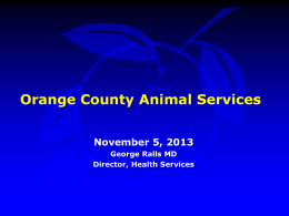 Discussion Animal Services Action Plan