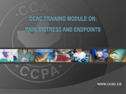 CCAC_training_module_on_pain_distress_and_endpoints