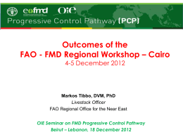 FMD Regional Workshop – Cairo 4-5 December - RR