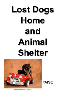 Lost Dogs Home and Animal Shelter