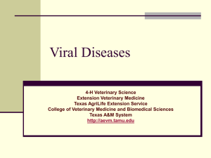 Nutritional Diseases - Extension Veterinary Medicine