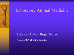 Laboratory Animal / Comparative Medicine Alternative Careers