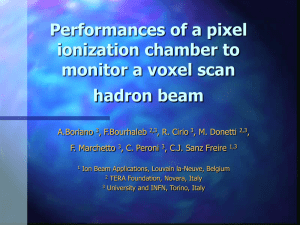 The pixel ionisation chamber: a detector for beam - INFN-LNS